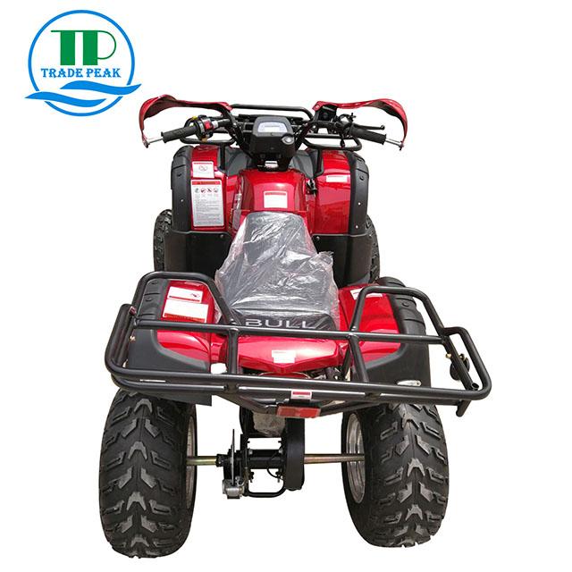 200CC ATV (5)